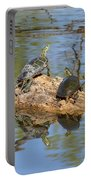 Turtles On Stump Portable Battery Charger