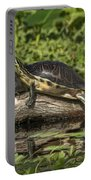 Turtles Sunning Portable Battery Charger