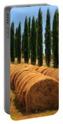 Tuscan Hay Portable Battery Charger