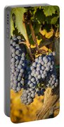 Tuscan Vineyard Portable Battery Charger by Brian Jannsen