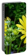 Twin Daisies  Portable Battery Charger