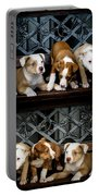 Twice The Love Portable Battery Charger