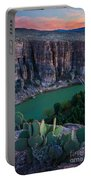 Twilight Cactus Portable Battery Charger