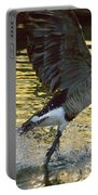 Twilight Goose I Portable Battery Charger