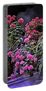 Twilight In The Courtyard Portable Battery Charger