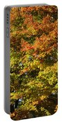 Twin Maples Portable Battery Charger