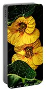 Twin Souls Valentine 3 Portable Battery Charger