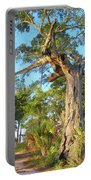 Twirling Tree Path Portable Battery Charger