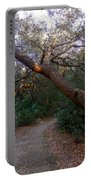 Twisted Oaks 2 Portable Battery Charger