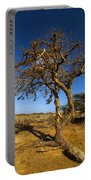 Twisted Tree Portable Battery Charger