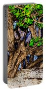 Twisted Trunks Portable Battery Charger