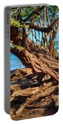 Twisting Trees Portable Battery Charger