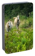 Two Appaloosa Horses  Portable Battery Charger