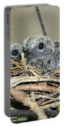 Two Baby Mourning Doves Portable Battery Charger