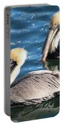 Two Beautiful Pelicans Portable Battery Charger