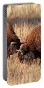 Two Bull Bison Facing Off In Yellowstone National Park Portable Battery Charger