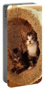 Two Cats In A Condo Portable Battery Charger