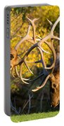 Two Elk Bulls Sparring Portable Battery Charger by James BO  Insogna