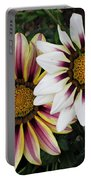 Two Gazanias Portable Battery Charger