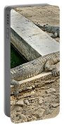 Two Gharial Crocodiles In Gharial Conservation Breeding Center In Chitwan Np-nepal   Portable Battery Charger