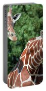 Two Giraffes Portable Battery Charger