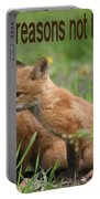 Two Good Reasons Not To Buy Fur Portable Battery Charger