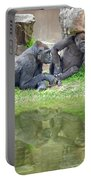 Two Gorillas Relaxing II Portable Battery Charger