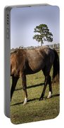 Two Horses Portable Battery Charger
