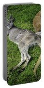 Two Lazy Kangaroos Lying Down Portable Battery Charger