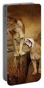 Two Lions Portable Battery Charger