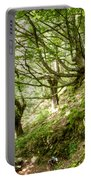 two little brothers Chasing Fairies in theBeech Forest on a summer day Portable Battery Charger