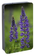 Two Lupine Portable Battery Charger