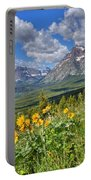 Two Medicine Valley Portable Battery Charger