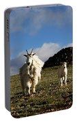 Two Mountain Goats Oreamnos Americanus Portable Battery Charger