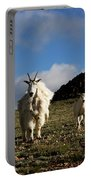 Two Mountain Goats Oreamnos Americanus Portable Battery Charger