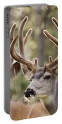Two Mule Deer Bucks With Velvet Antlers  Portable Battery Charger