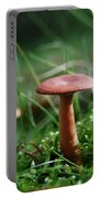 Two Mushrooms Portable Battery Charger