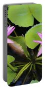 Two Pink Water Lilies Portable Battery Charger