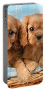 Two Puppies In Woven Basket Dp709 Portable Battery Charger