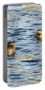 Two River Otters Portable Battery Charger