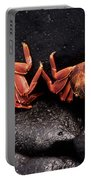 Two Sally Lightfoot Crabs Portable Battery Charger