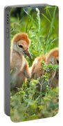 Two Sandhill Crane Chicks Portable Battery Charger