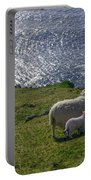 Two Sheep On The Cliffs At Sleive League - Donegal Ireland Portable Battery Charger