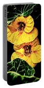 Two Shy Sisters Fractal Portable Battery Charger