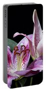 Two Star Lilies Portable Battery Charger