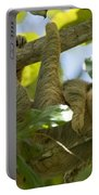 Two-toed Sloth Relaxing With A Grin Portable Battery Charger