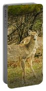 Two White Tailed Deer Portable Battery Charger