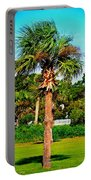 Tybee Palm Portable Battery Charger