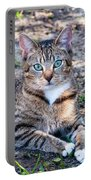 Tyger 3 Portable Battery Charger