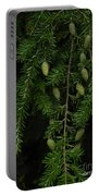 Tyler Baby Pinecones 1 Portable Battery Charger